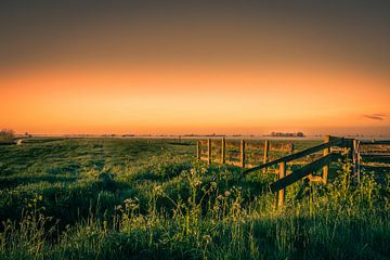 Polder Landschap van Rob IJlst