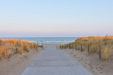 Der Strand von Noordwijk bei Sonnenaufgang von Charlene van Koesveld