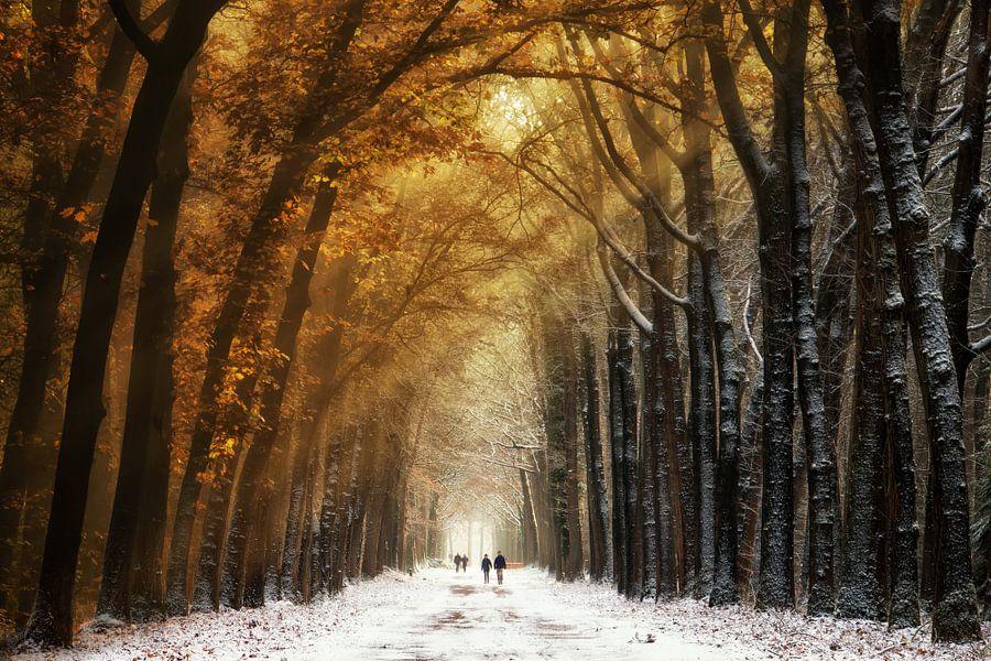Autumn2Winter