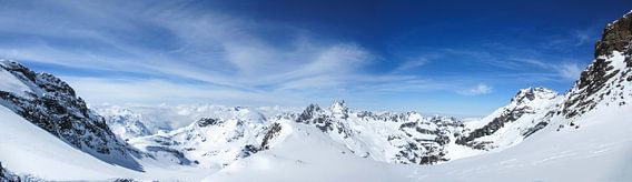 The View at Schneeglocke van Johnny van der Leelie