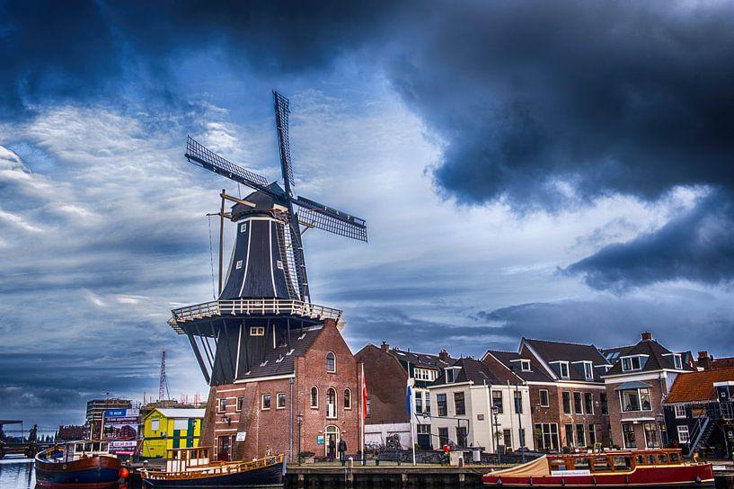 Adriaan Haarlem van Brian Morgan