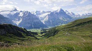 Uitzicht op de Jungfrau, Eiger en Mönch van André Hamerpagt