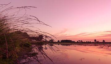 Strabrechtse Heide 129 sur Desh amer