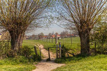 Wandelen  rond Mechelen in Zuid-Limburg van