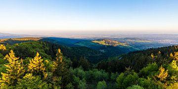 Uitzicht vanaf het Schauinsland in het Zwarte Woud van Werner Dieterich
