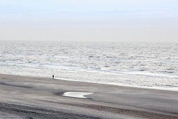 De strandwandeling von Martie Spork