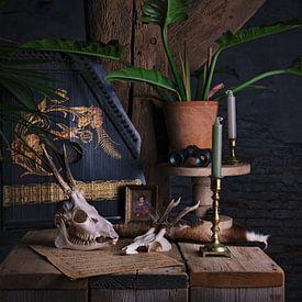Nature morte avec cithare et crânes sur Anouschka Hendriks