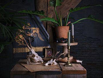Stilleben mit Zither und Schädeln von Anouschka Hendriks