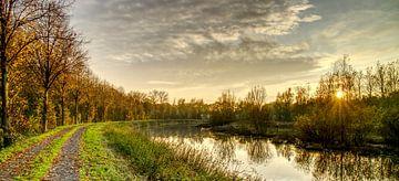 Herbstliche Farben bei Sonnenuntergang im Mastbos, Breda von Wouter Vriens