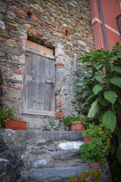 Vernazza, Cinque Terre van Kramers Photo