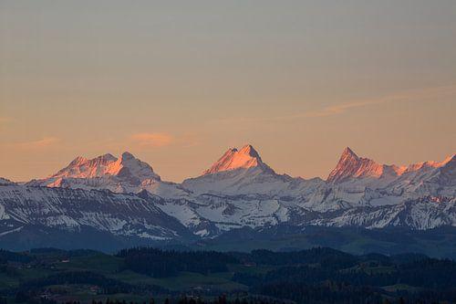 Berner Alpen im Morgenlicht Sonnenaufgang