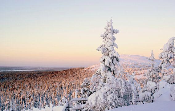 Fins lapland in wintersfeer van Birgitte Bergman