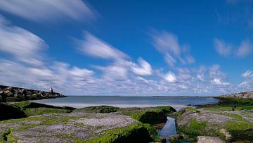 Noord hollandse pieren