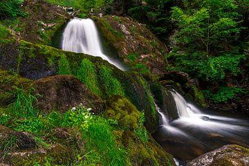 Het groen rond de Triebergse waterval van Christian Klös