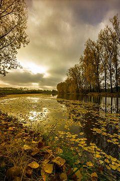 Ontwakend landschap von Sandra Kuijpers