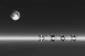 Klimawandel - Pferde von Jan Keteleer