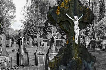 Geloof en Sterfte op het kerkhof van Brian Morgan