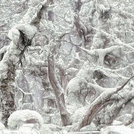 Winterman van Lars van de Goor