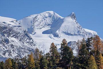 Findelntal mit Strahlhorn und Adlerhorn  Zermatt, Schweiz von Torsten Krüger