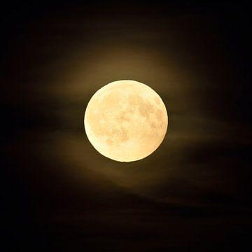 Full moon shining bright in dark night van