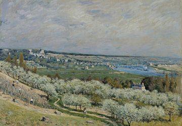 Die Terrasse von Saint-Germain, Frühling, Alfred Sisley