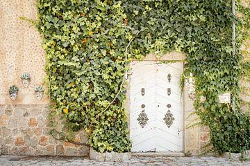 Klimop tegen muur met mooie oude deur van Evelien Oerlemans
