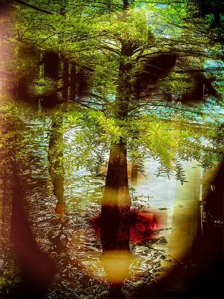 Inside the water van Gabi Hampe