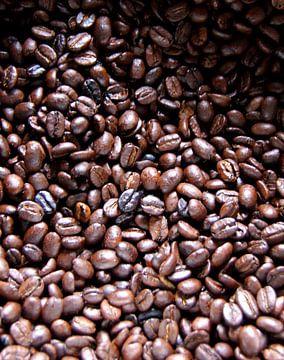 Vers gebrande koffie van Stefan Kruizinga
