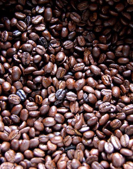 Vers gebrande koffie