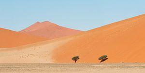 Namibia Wüste Sossusvlei von Jeannette Kliebisch