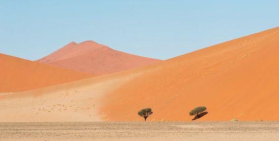 Namibië, woestijn , Sossusvlei van Jeannette Kliebisch