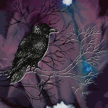 Rabe dunkel Stiftzeichnung von Bianca Wisseloo