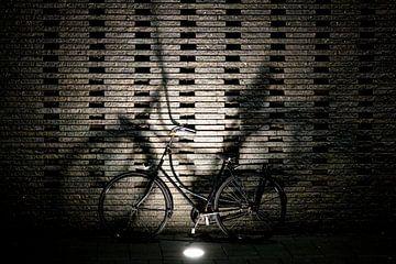Utrecht fietsstad van Jan van der Knaap