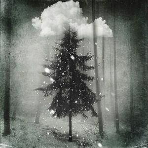 Varen in de sneeuw van