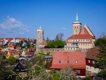 Oude stad van Bautzen in Saksen van Animaflora PicsStock