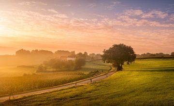 Ein Morgen im Süden! von Stan Bessems