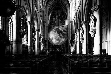 Ochtend in de kathedraal van Tim Briers
