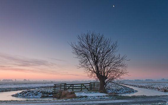 Winter in de polder van Frans Batenburg