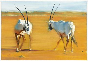 Circuit Arabian Oryx van Mark Adlington