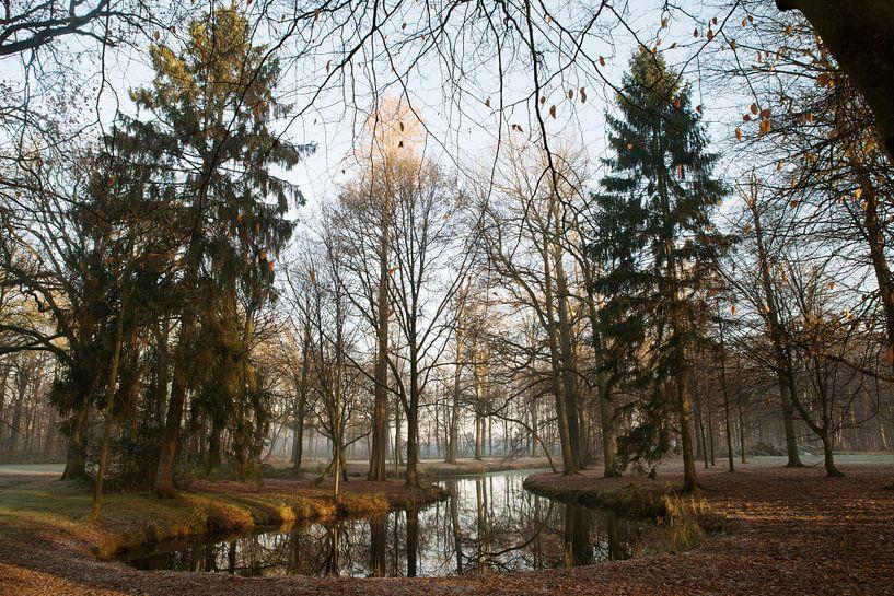 Water in het bos van Egon Zitter