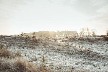 De Nederlandse winter van Sanne Dost