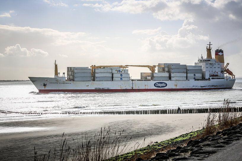 De bananenboot van Chiquita in Vlissingen (Zeeland) van Fotografie Jeronimo
