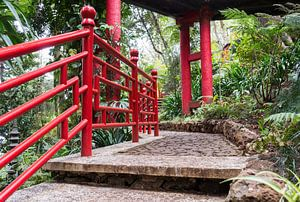 Japanese garden on maadeira island