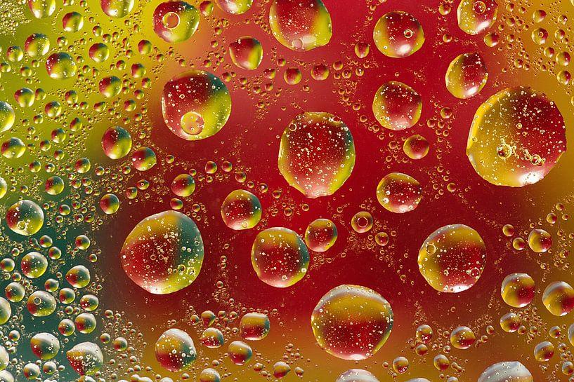 Les bulles van Georges Rudolph