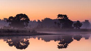 Strabrechtse Heide 246 von Deshamer