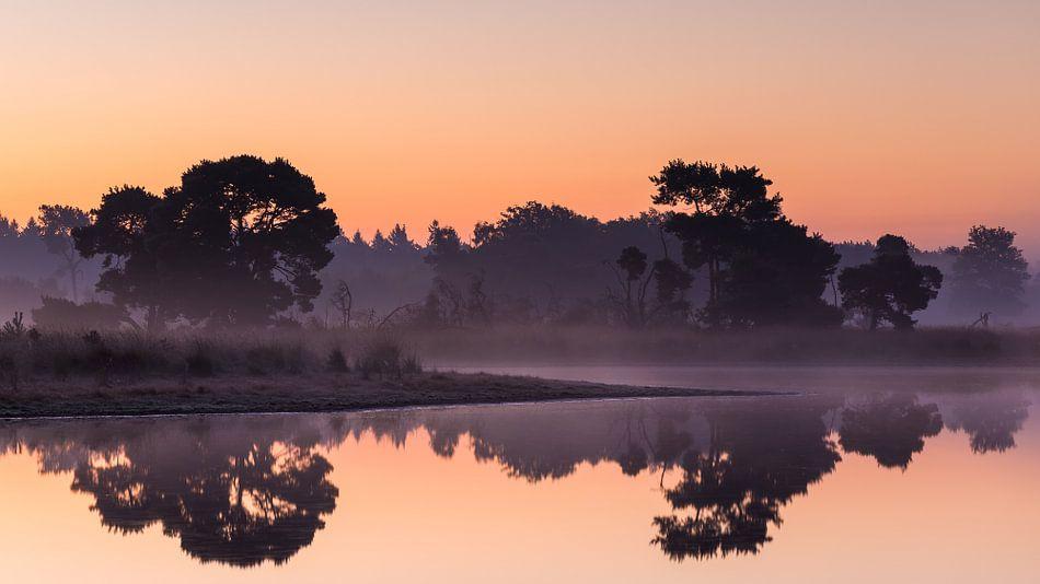 Strabrechtse Heide 246 van Desh amer