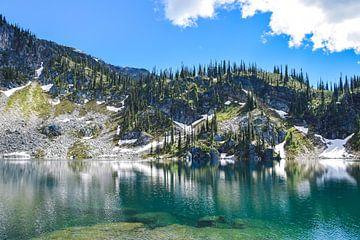 Spiegelung im Miller Lake von Manon Verijdt
