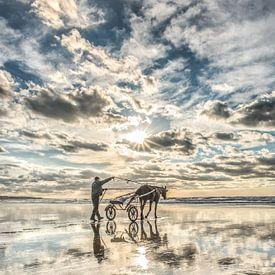 Paardenmenner op het strand bij Ault in Noord Frankrijk van Harrie Muis