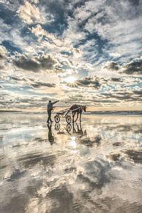 Reiterin am Strand bei Ault in Nordfrankreich