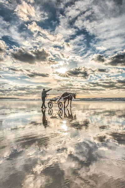 Reiterin am Strand bei Ault in Nordfrankreich von Harrie Muis